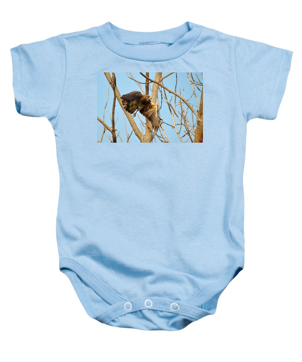 Nature Baby Onesie featuring the photograph Taking Flight by Crystal Massop
