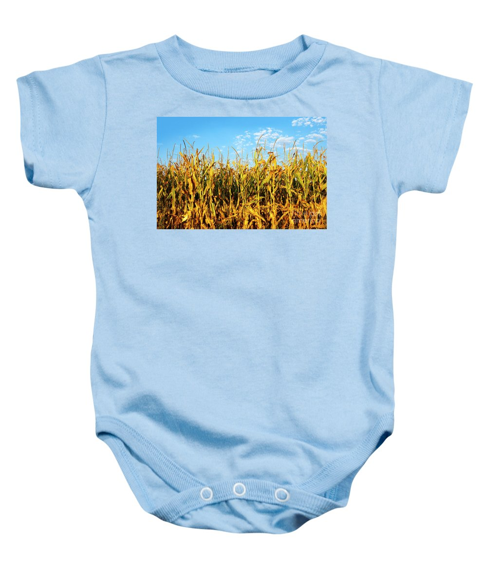 Agriculture Baby Onesie featuring the photograph Corn Field by Carlos Caetano