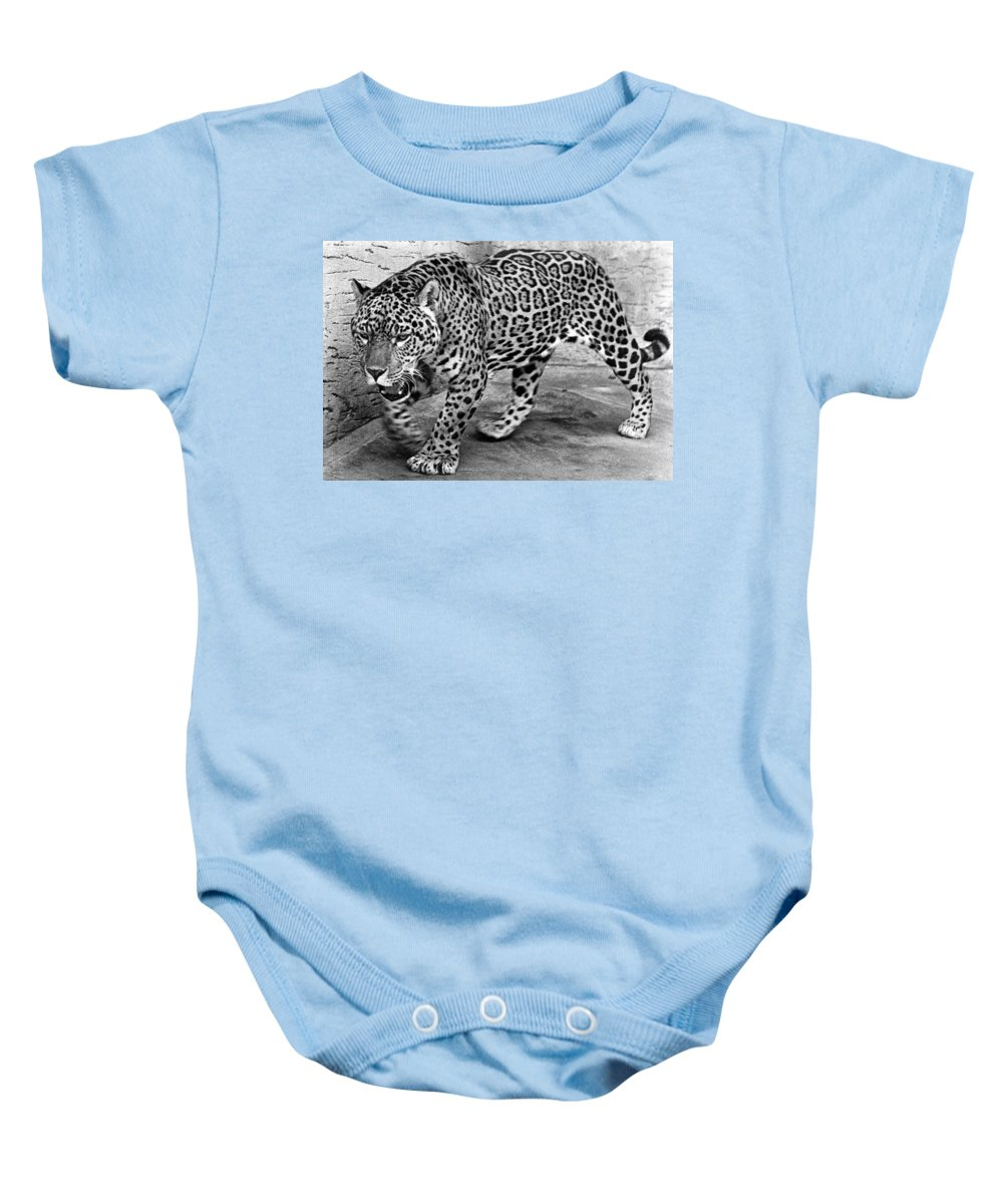 20th Century Baby Onesie featuring the photograph Jaguar by Granger