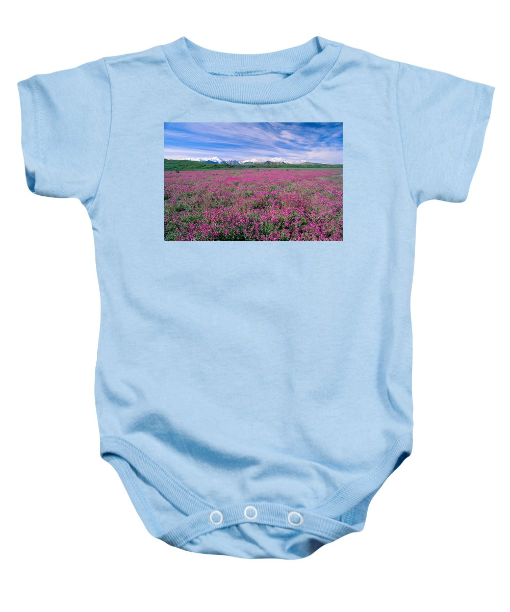 Bloom Baby Onesie featuring the photograph Denali National Park by John Hyde - Printscapes