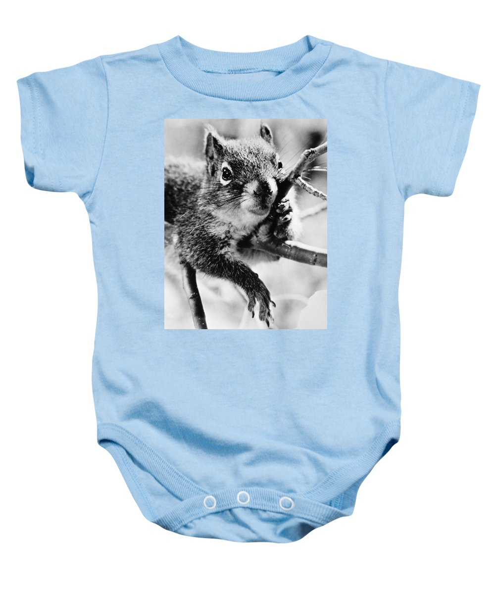 20th Century Baby Onesie featuring the photograph Squirrel by Granger