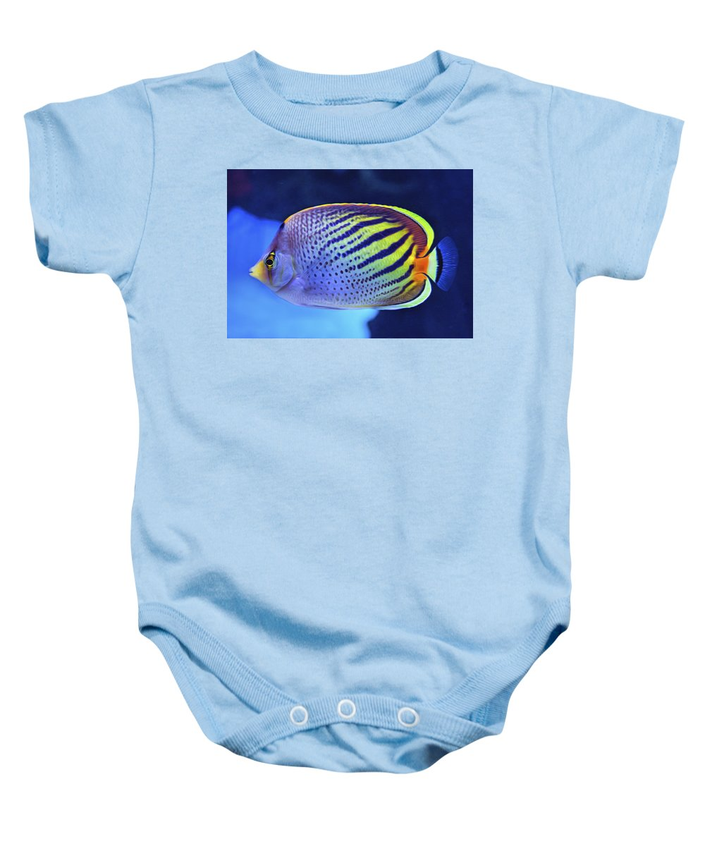 7d Mark Ii Baby Onesie featuring the photograph Tropical Fish by Mark Chandler