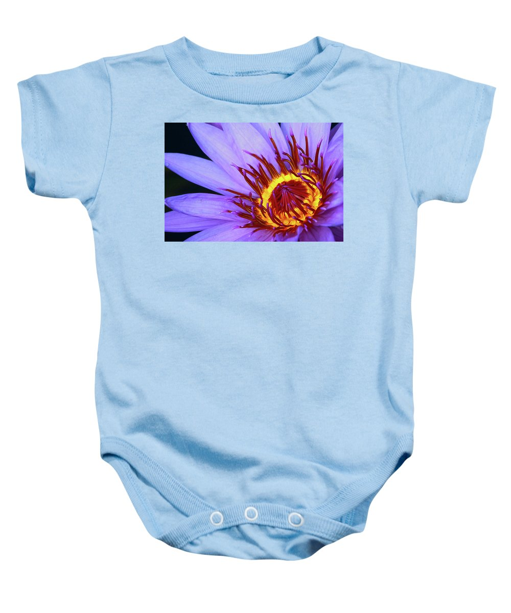 Naples Botanical Butterflies And Flowers Baby Onesie featuring the photograph Water Lily by Dennis Goodman
