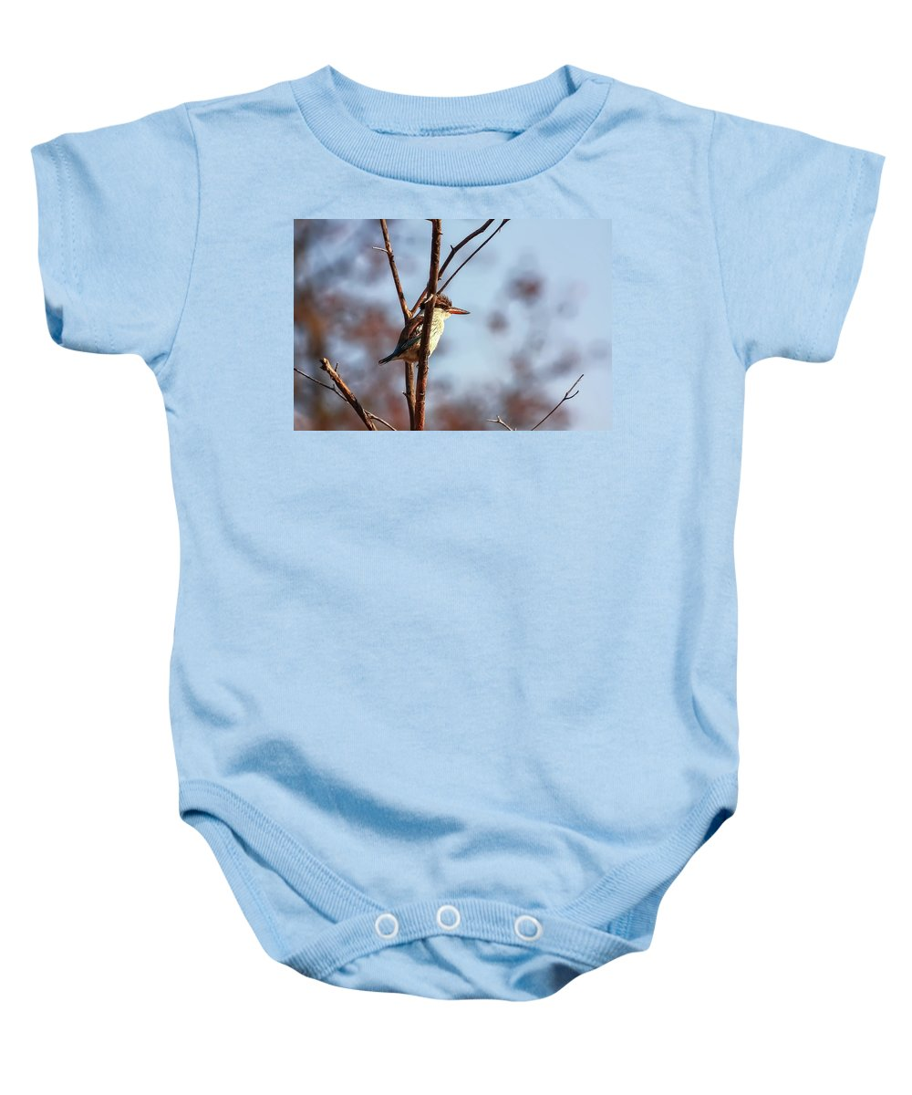Brown-hooded Kingfisher Baby Onesie featuring the photograph A Brown-hooded Kingfisher by Kay Brewer