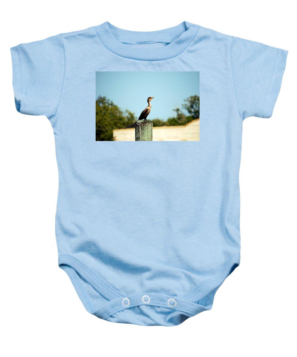 Bird Baby Onesie featuring the photograph A Little Bird by Katherine W Morse