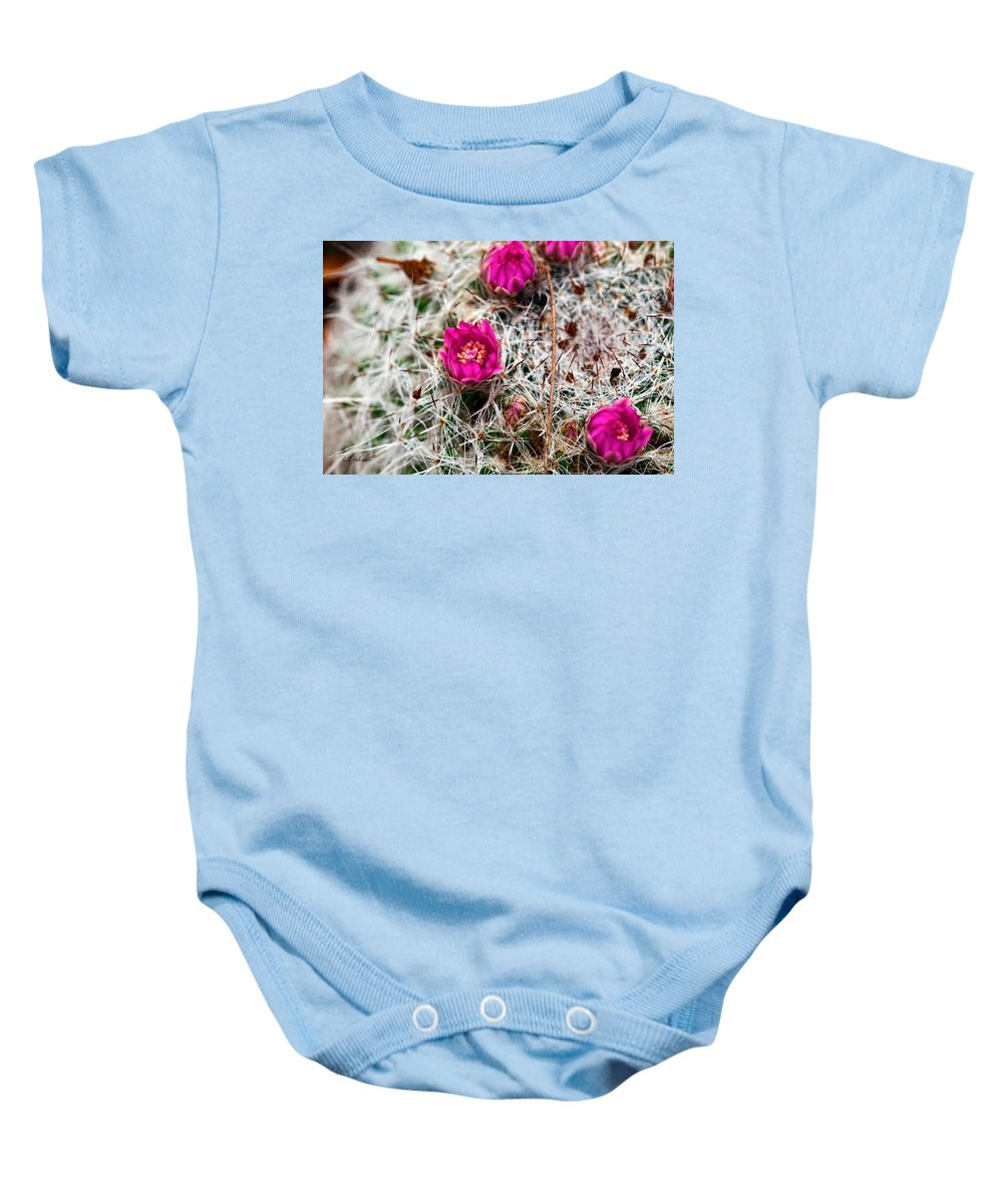 Cactus Baby Onesie featuring the photograph A Prickly Bed by Christopher Holmes