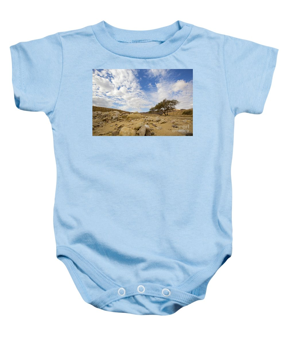Absence Baby Onesie featuring the photograph Acacia Tree In The Desert by Alon Meir