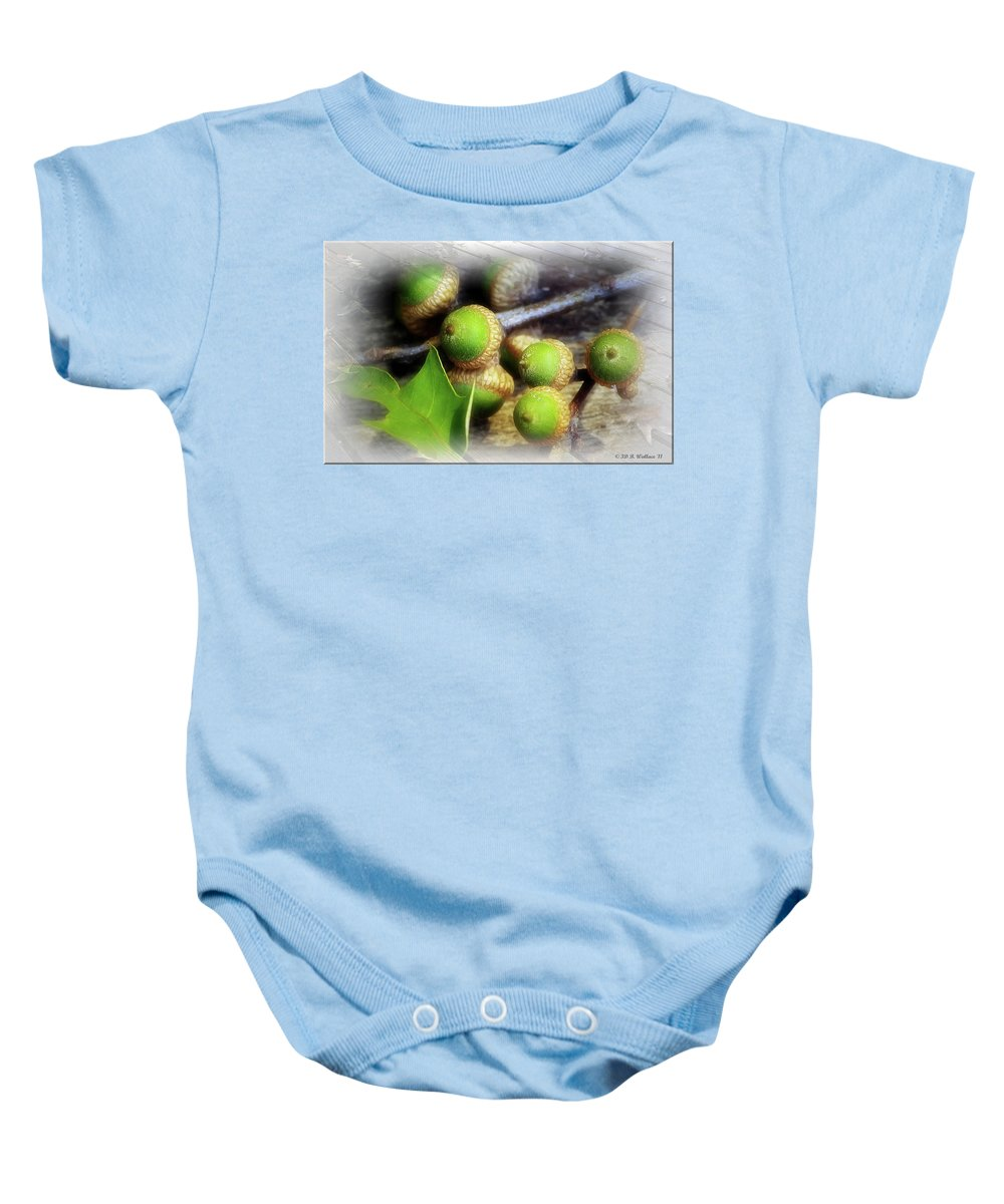 2d Baby Onesie featuring the photograph Acorns by Brian Wallace