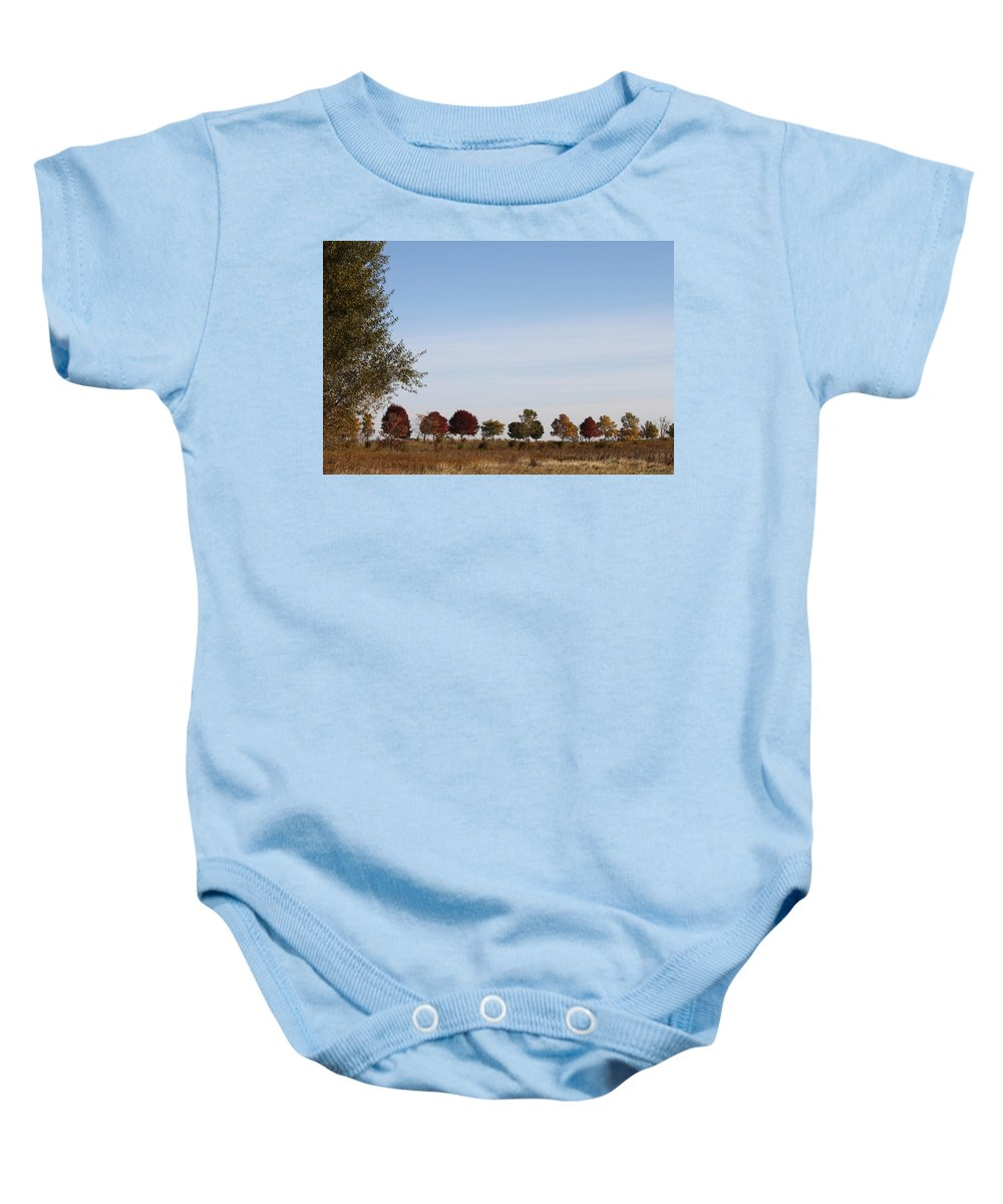 Tree Baby Onesie featuring the photograph All In A Row by Lauri Novak