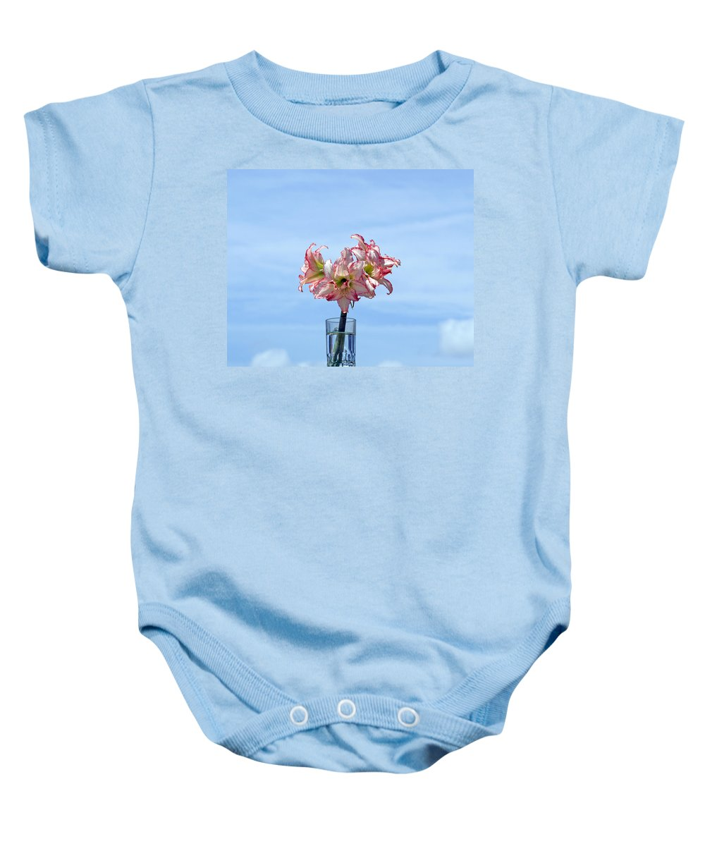 Amaryllis; Belladonna; Lily; Naked; Ladies; Lady; Florida; Spring; Sky; Bloom; Blooming. Flower; Blo Baby Onesie featuring the photograph Amaryillis Belladonna Against The Spring Florida Sky by Allan Hughes
