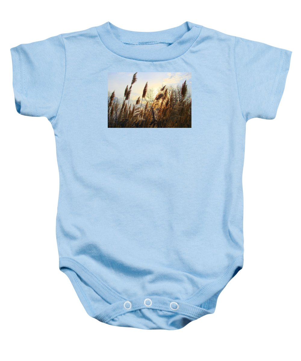 Pampasgrass Baby Onesie featuring the photograph Amber Waves Of Pampas Grass by J R Seymour