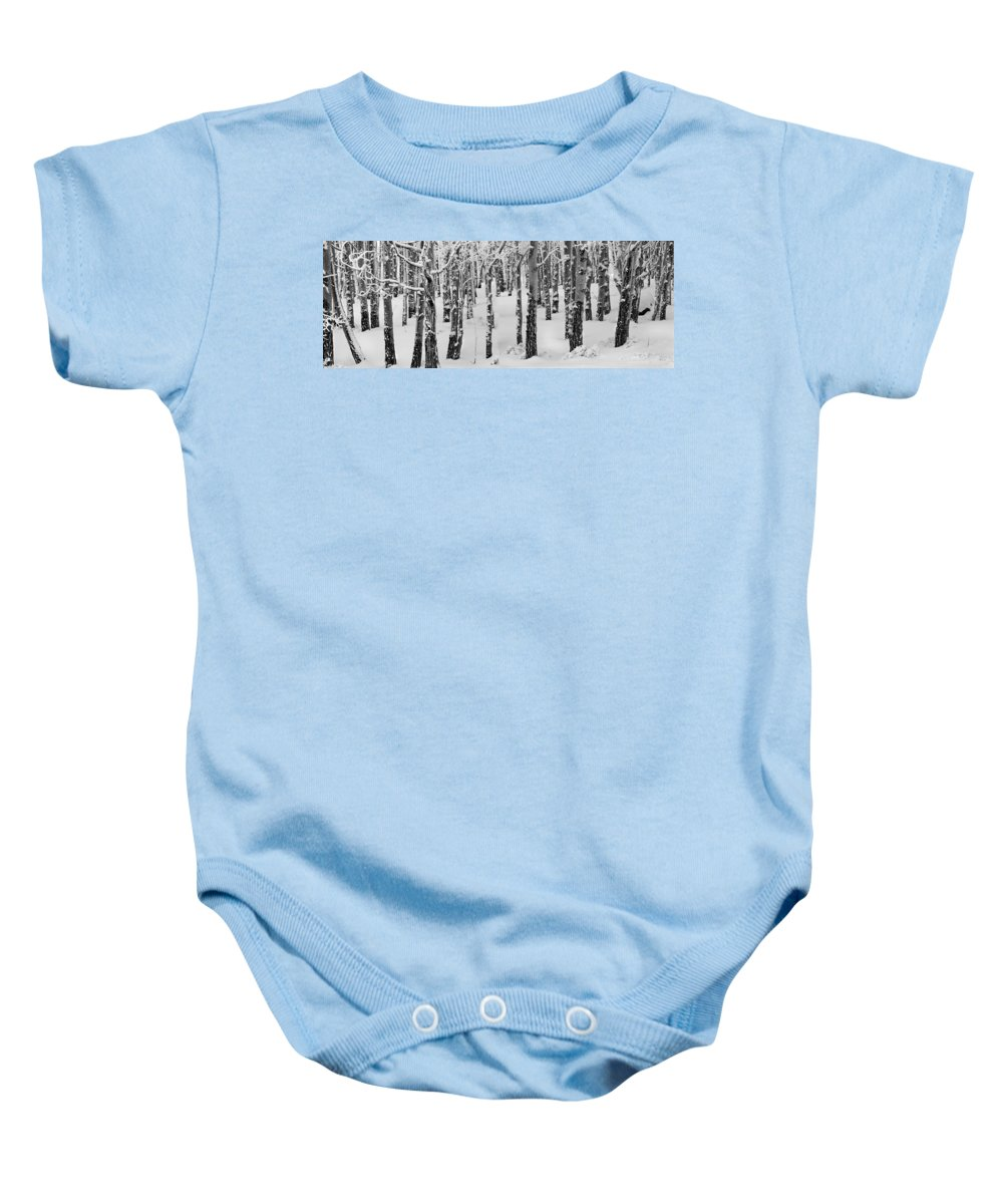 Black And White Baby Onesie featuring the photograph Aspens In Winter by Leland D Howard