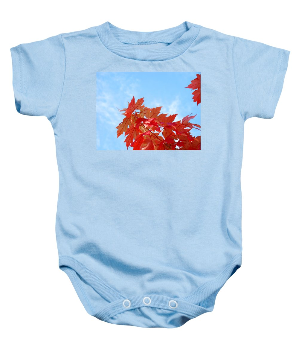 Autumn Baby Onesie featuring the photograph Autumn Landscape Fall Leaves Blue Sky White Clouds Baslee by Baslee Troutman