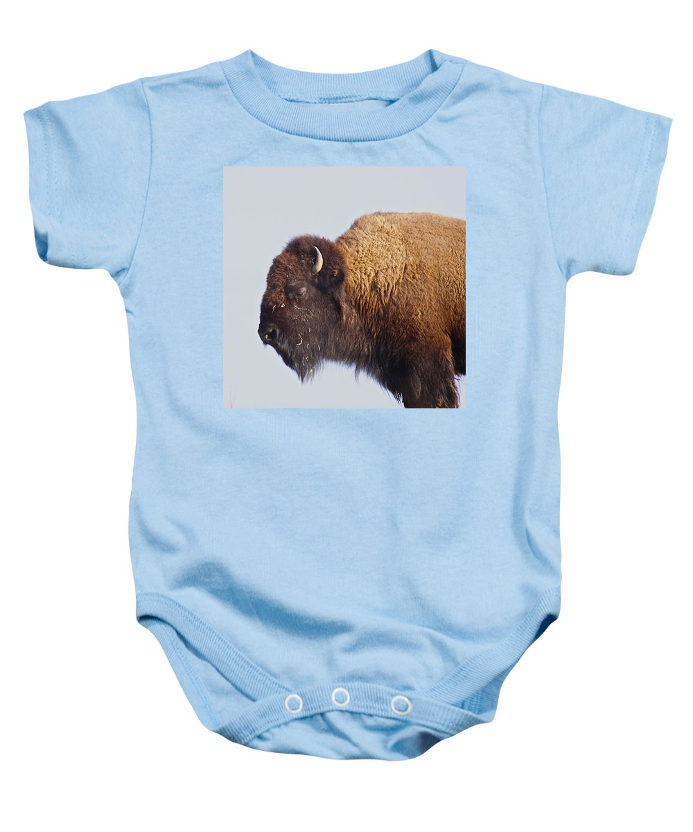 Animal Baby Onesie featuring the photograph Baffalo by Robert Pearson