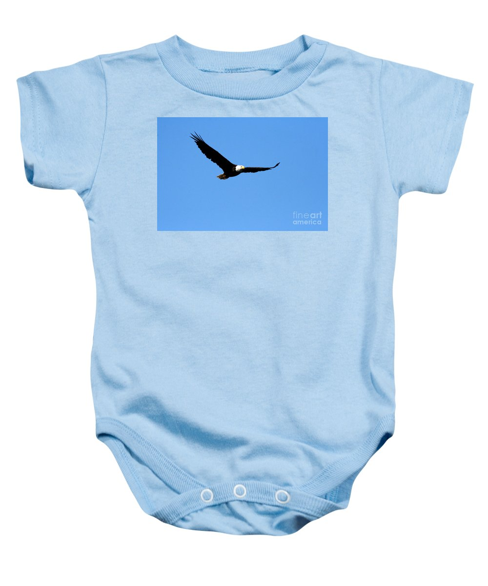 Eagle Baby Onesie featuring the photograph Bald Eagle II by Thomas Marchessault