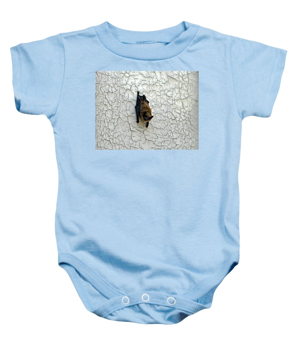Bat Baby Onesie featuring the photograph Batty Grin by Catherine Melvin