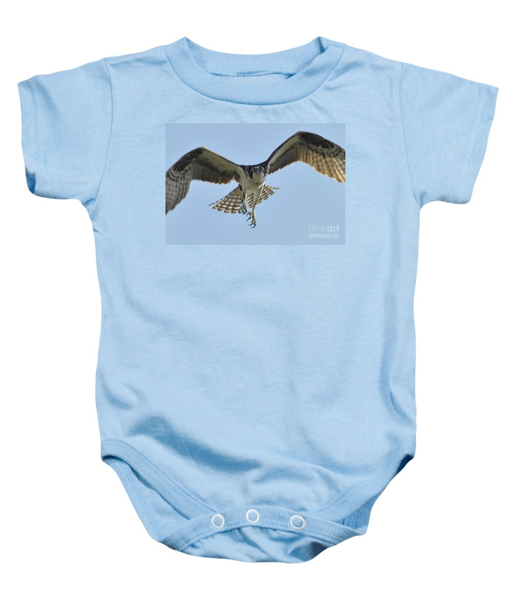 Osprey Baby Onesie featuring the photograph Before The Catch by David Lee Thompson