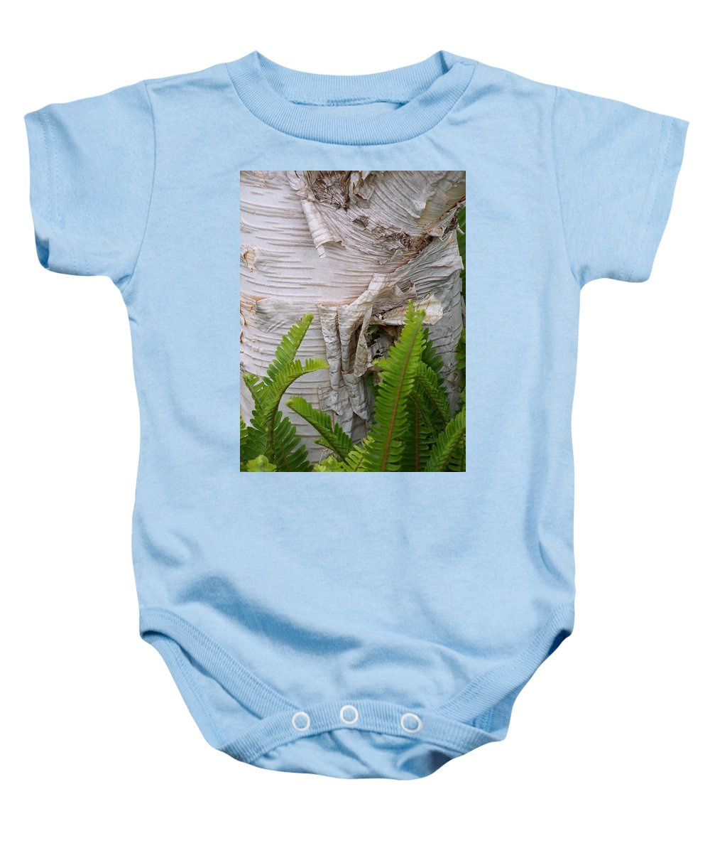 Tree Baby Onesie featuring the photograph Birch Fern by Gale Cochran-Smith
