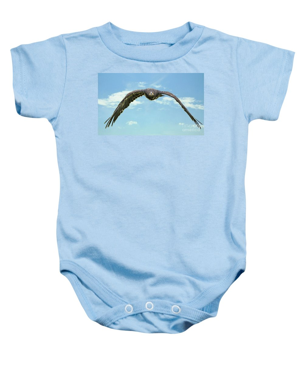 Eagle Baby Onesie featuring the photograph Birds 66 by Ben Yassa