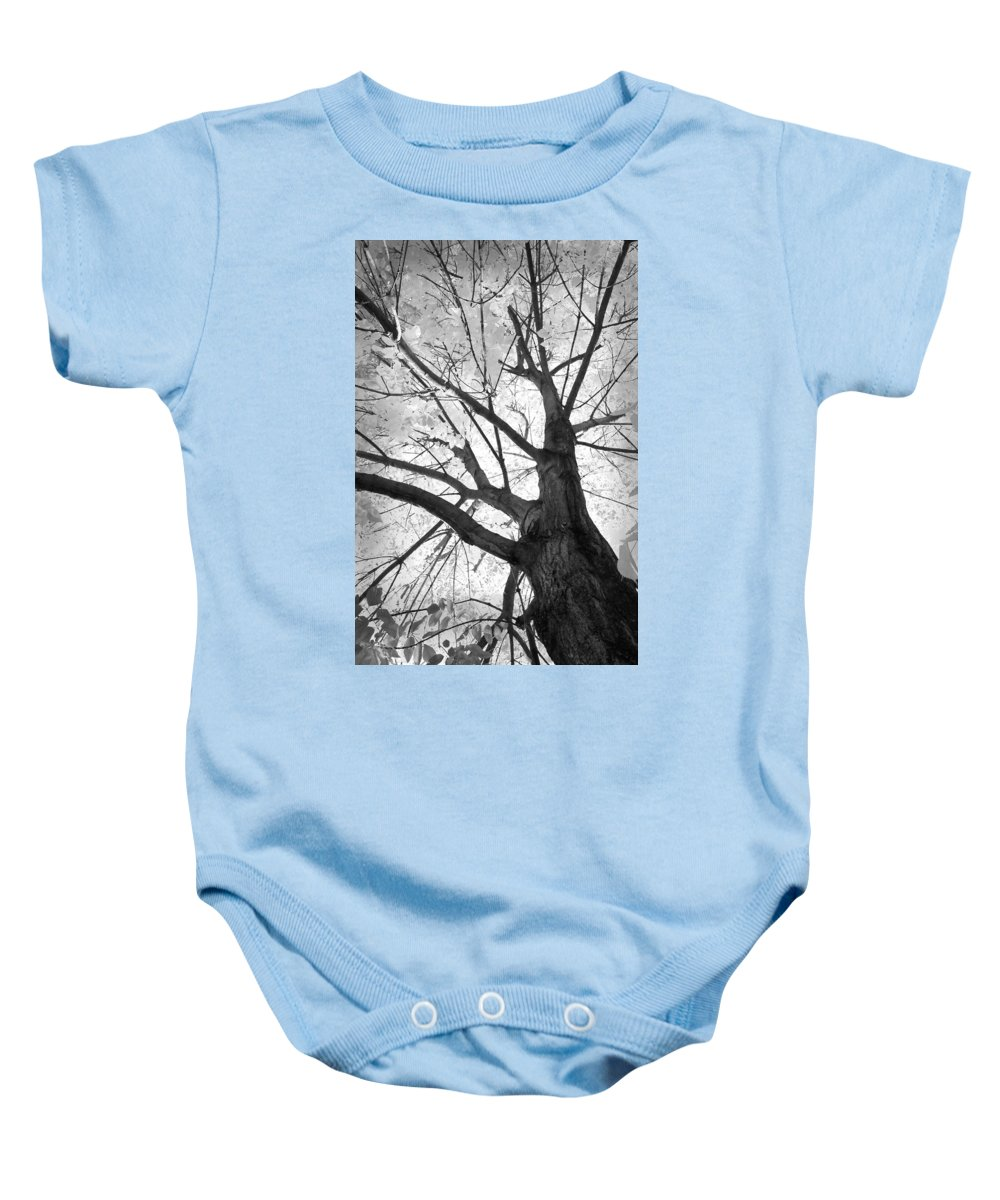 Black Baby Onesie featuring the photograph Black And White Autumn Tree by James BO Insogna
