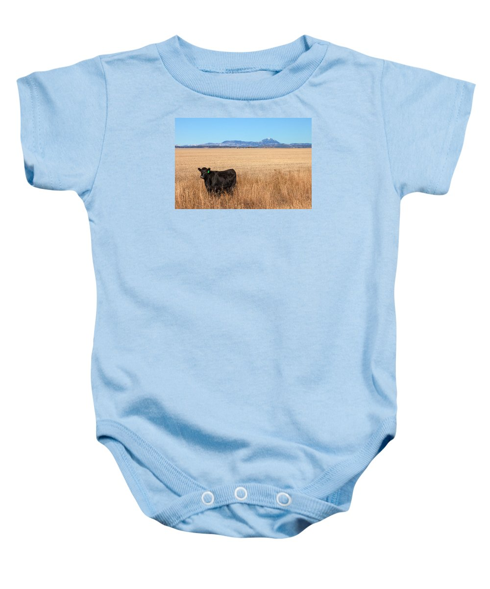 Black Angus Baby Onesie featuring the photograph Black Angus Looking by Todd Klassy