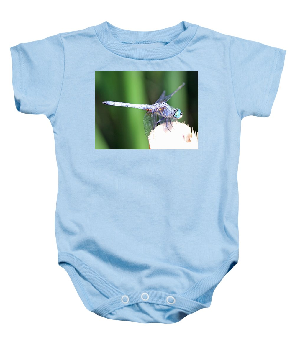 Dragonfly Baby Onesie featuring the photograph Blue Dragon by Shoal Hollingsworth