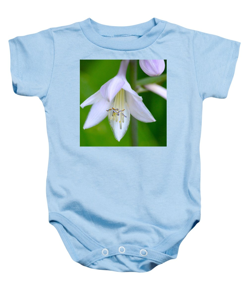 White Flower Bow Maine Nature Macro Baby Onesie featuring the photograph Bowing Blossom by Sheila Price