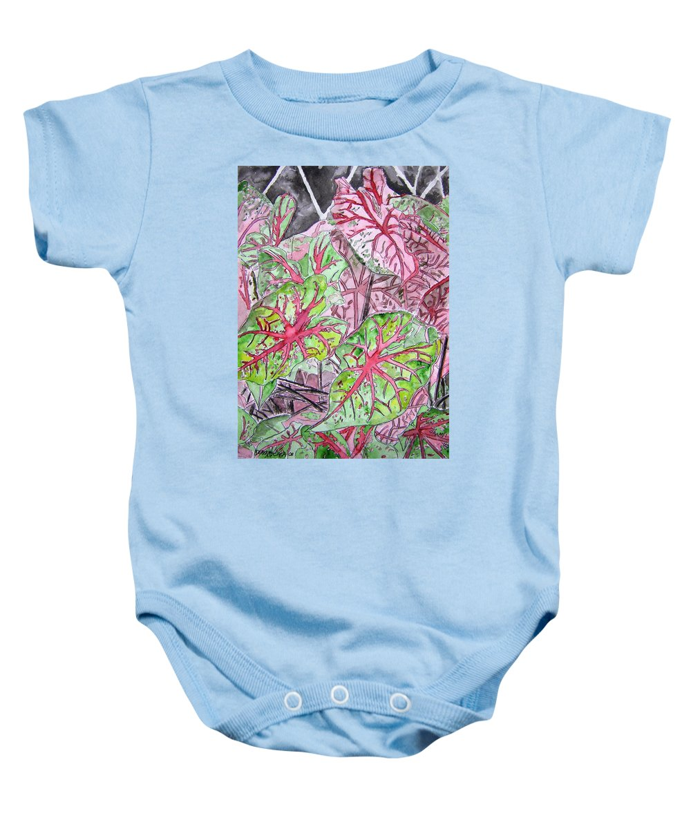 Watercolour Baby Onesie featuring the painting Caladiums Tropical Plant Art by Derek Mccrea