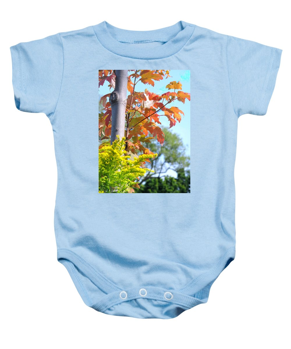 Maple Baby Onesie featuring the photograph Changing Leaves by Ian MacDonald