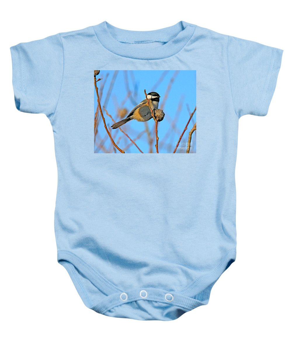 Chickadee.biid Baby Onesie featuring the photograph Chickadee by Robert Pearson
