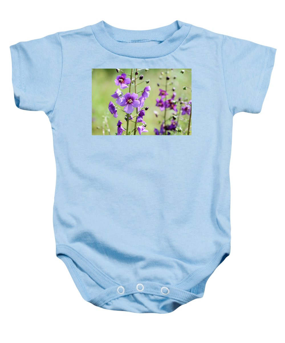 Verbascum Baby Onesie featuring the photograph Close Up Of Verbascum Phoeniceum by Alain De Maximy