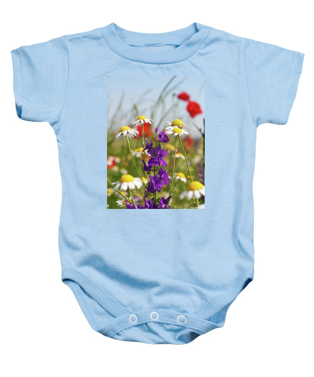 Camomile Baby Onesie featuring the photograph Colorful Wild Flowers Nature Scene by Goce Risteski
