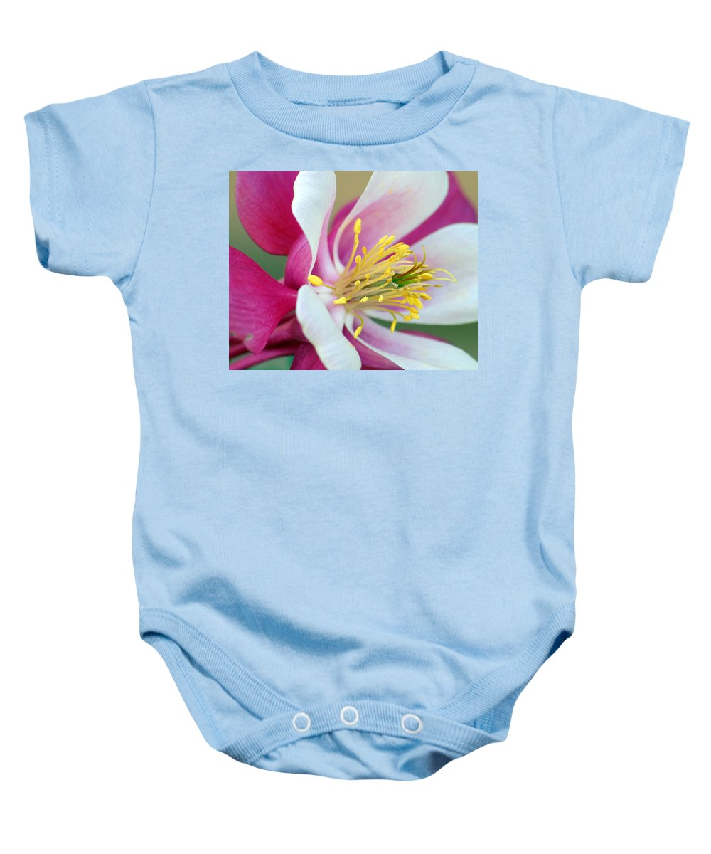 Columbine Baby Onesie featuring the photograph Columbine Flower 2 by Amy Fose