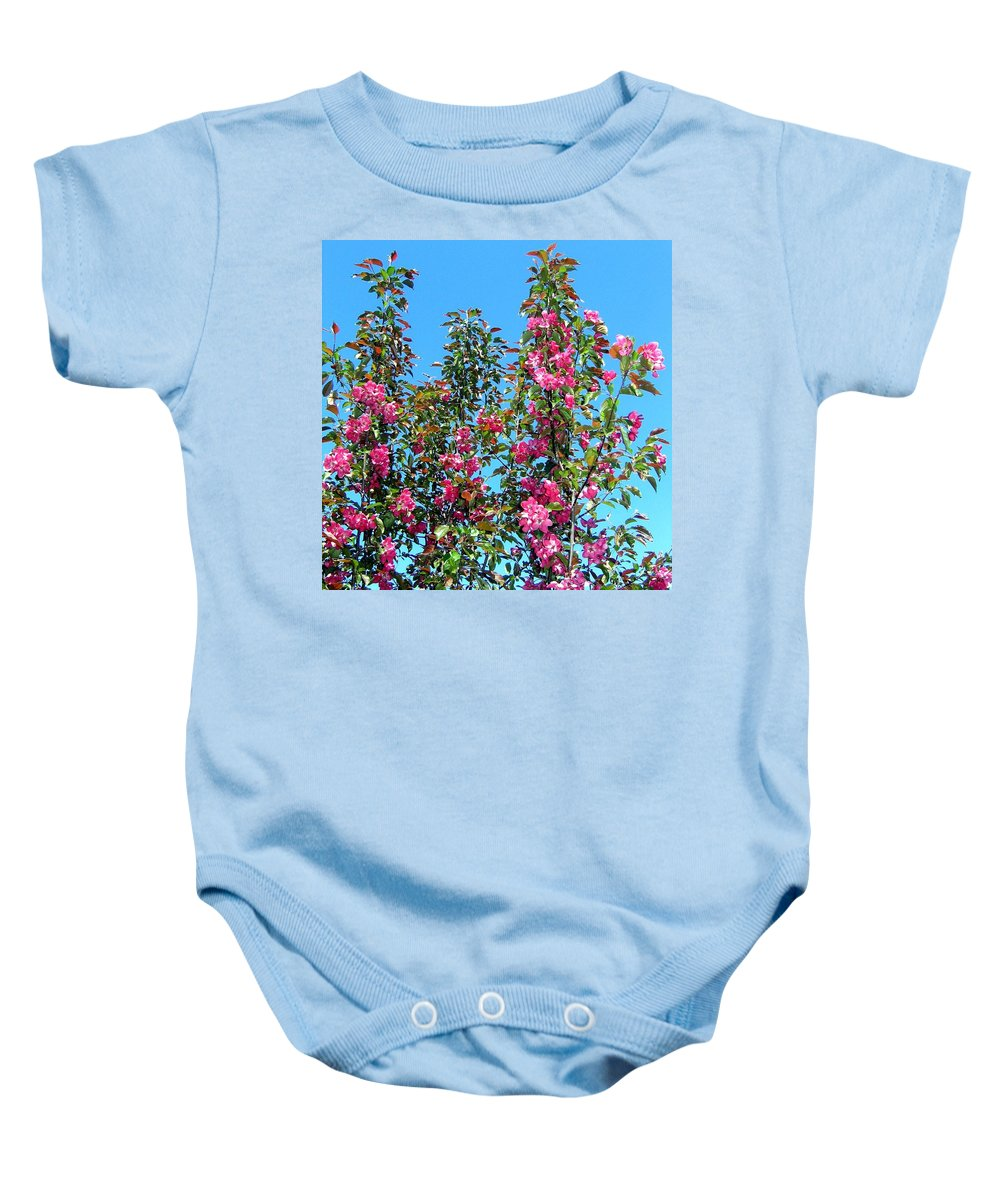 Crab Apple Blossoms Baby Onesie featuring the photograph Crab Apple Blossoms by Will Borden