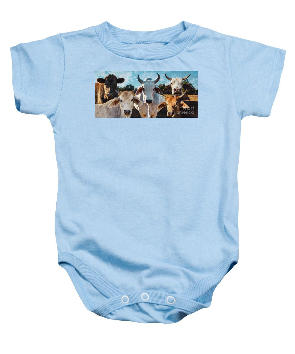Cows Baby Onesie featuring the photograph Cupcake Cows by James Hennis