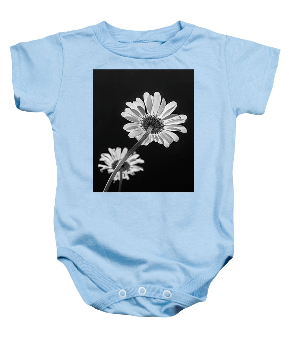 Daisys Baby Onesie featuring the photograph Daisy Reaching For The Sun by Garry McMichael