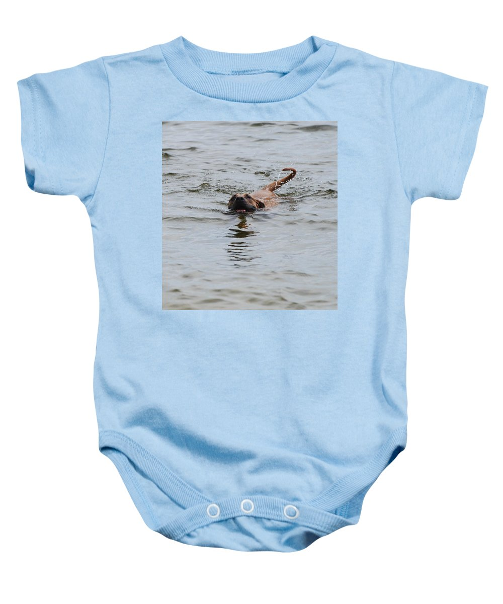 Swimming Baby Onesie featuring the photograph Dirty Water Dog by Rob Hans