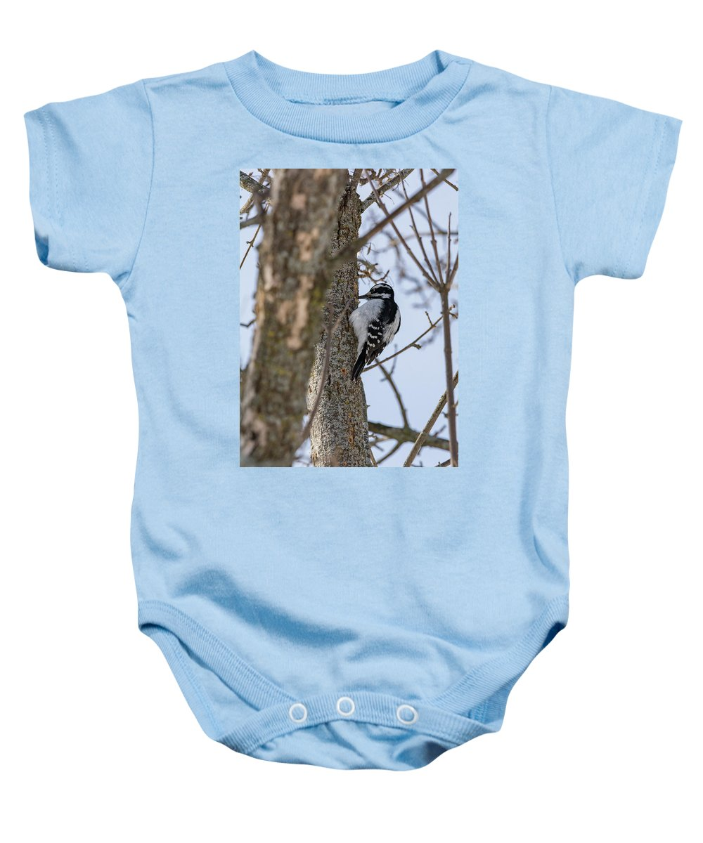 Downy Woodpecker Baby Onesie featuring the photograph Downy Woodpecker by Jessica Michaels