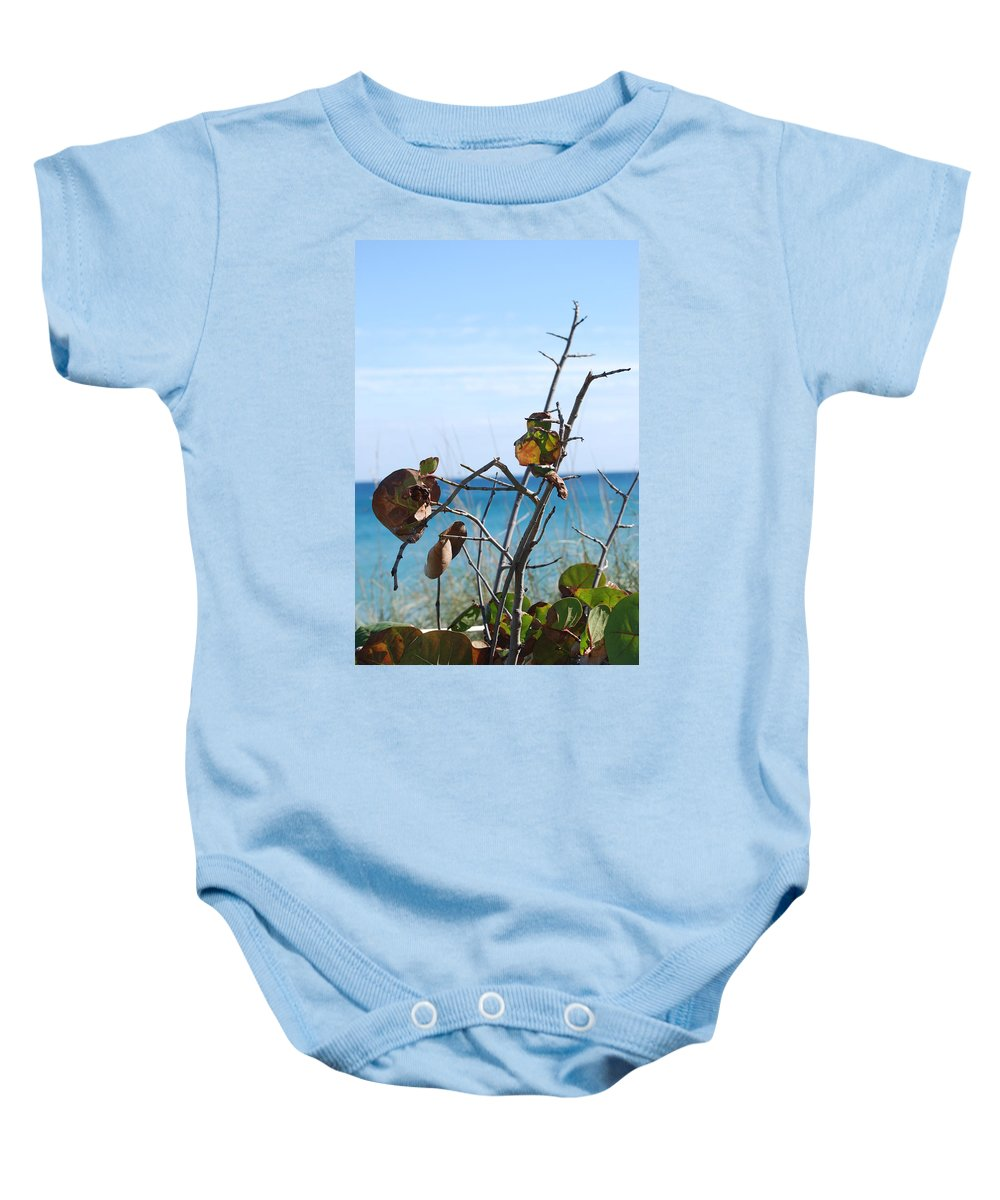Ocean Baby Onesie featuring the photograph Dune Plants by Rob Hans