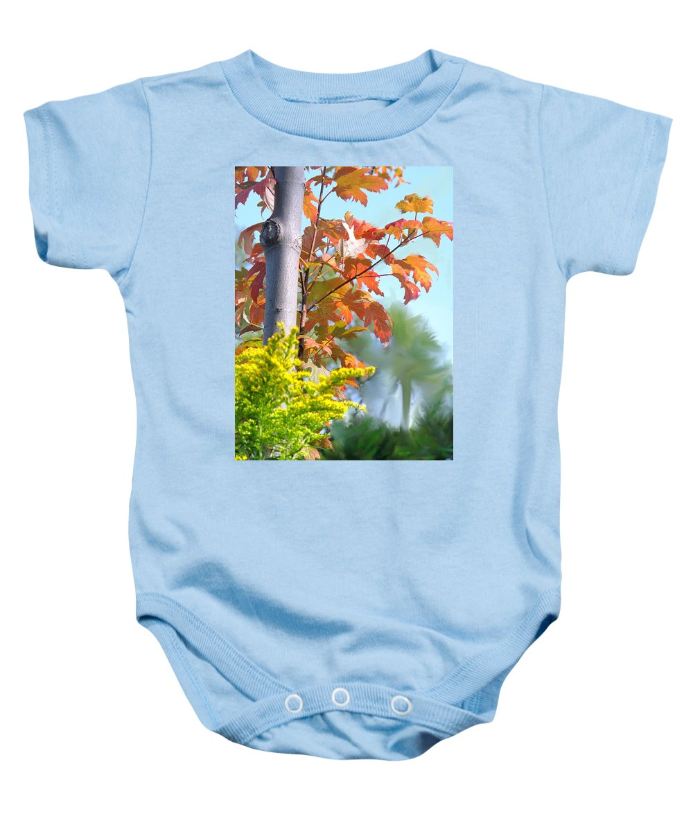 Maple Baby Onesie featuring the photograph Early Autumn by Ian MacDonald