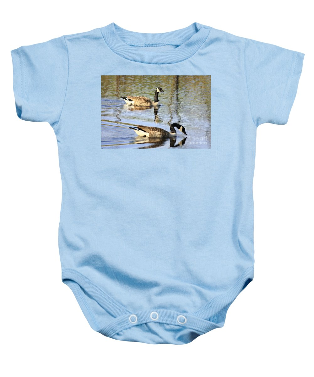 Geese Baby Onesie featuring the photograph Evening Light On Nature by Deborah Benoit