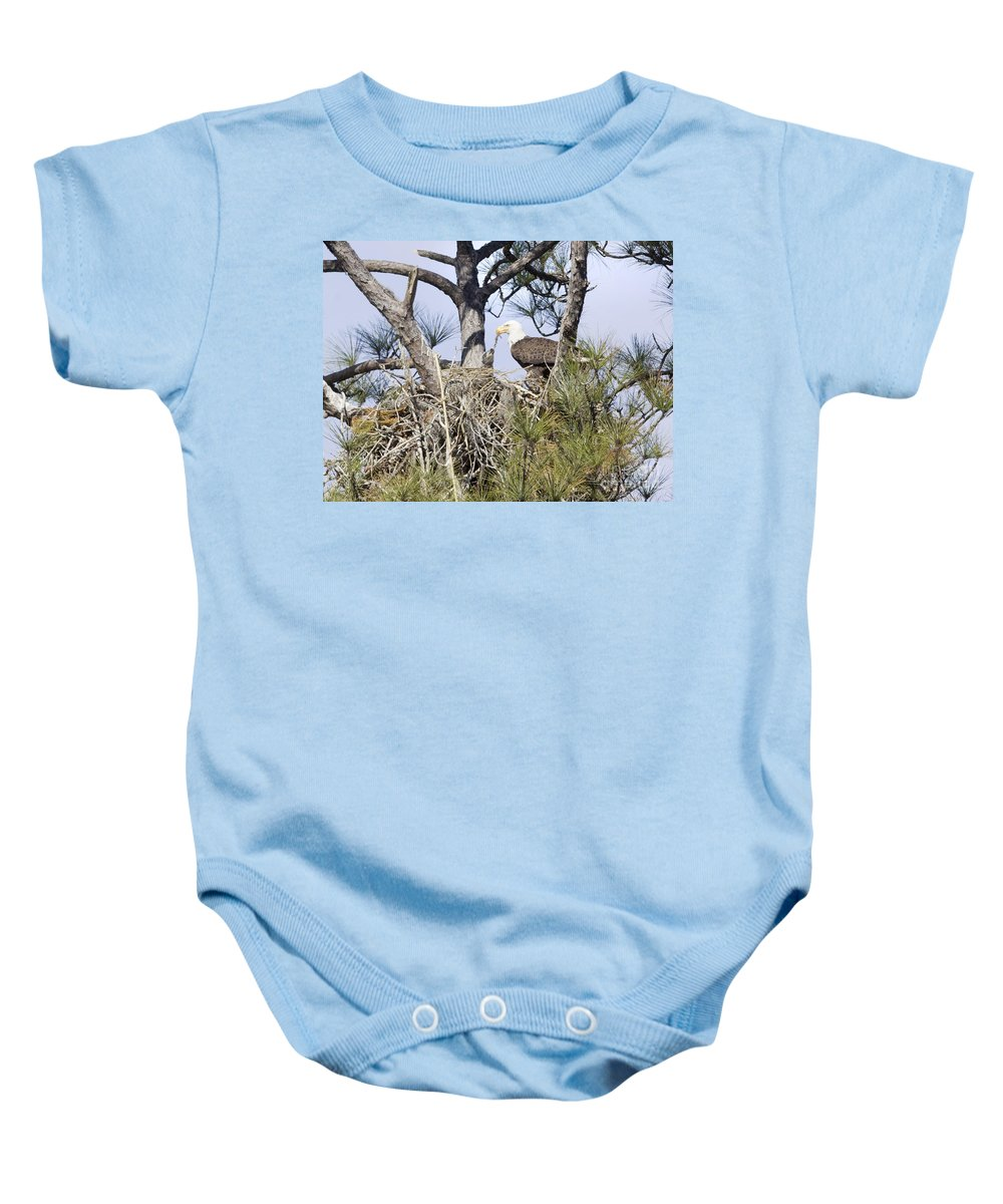 Eagles Baby Onesie featuring the photograph Feeding Little One by Deborah Benoit