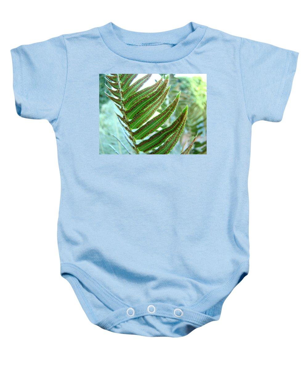 Fern Baby Onesie featuring the photograph Fern Art Print Green Forest Ferns Baslee Troutman by Baslee Troutman
