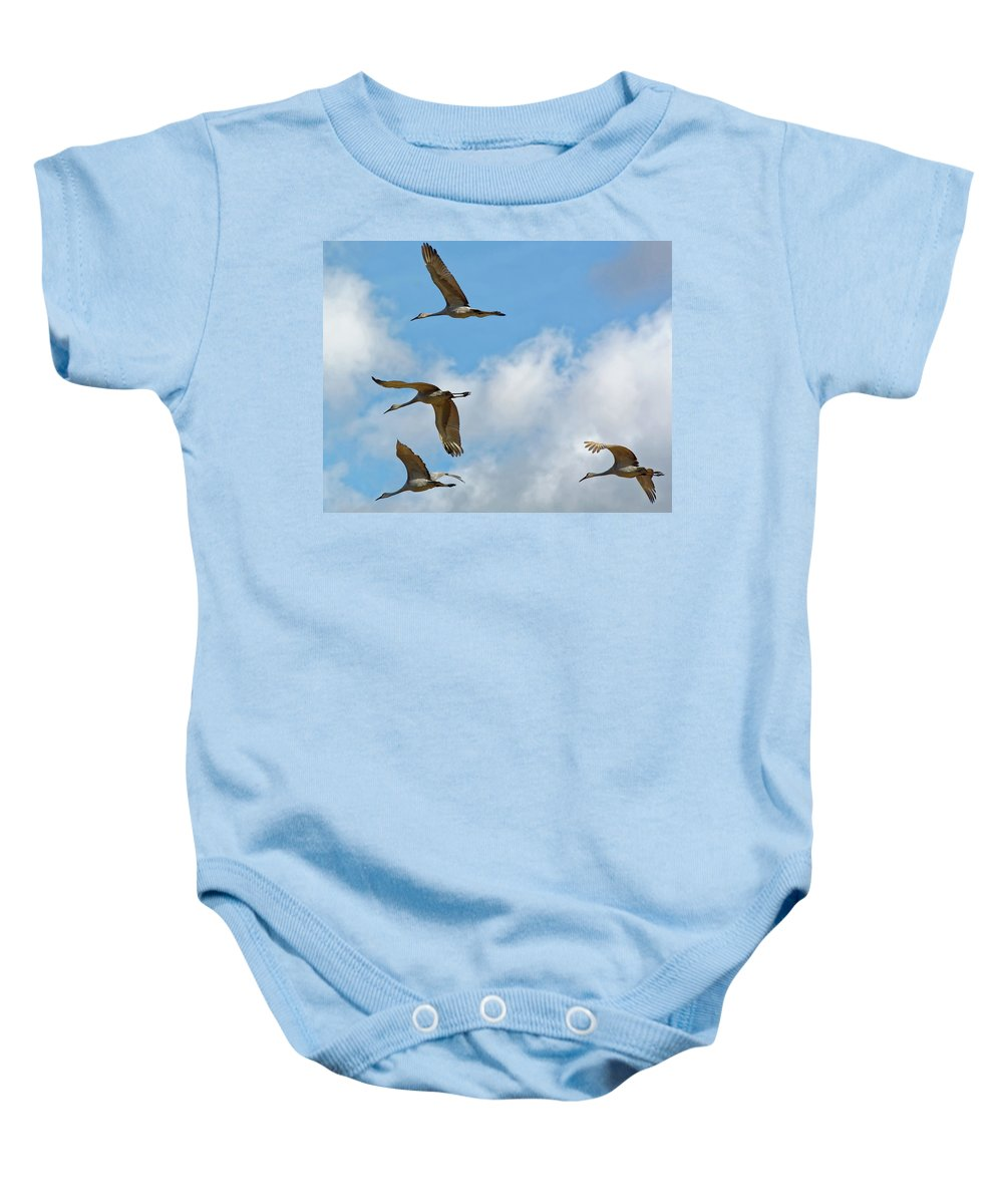 Cranes Baby Onesie featuring the photograph Flight Of The Cranes by Peter Ponzio