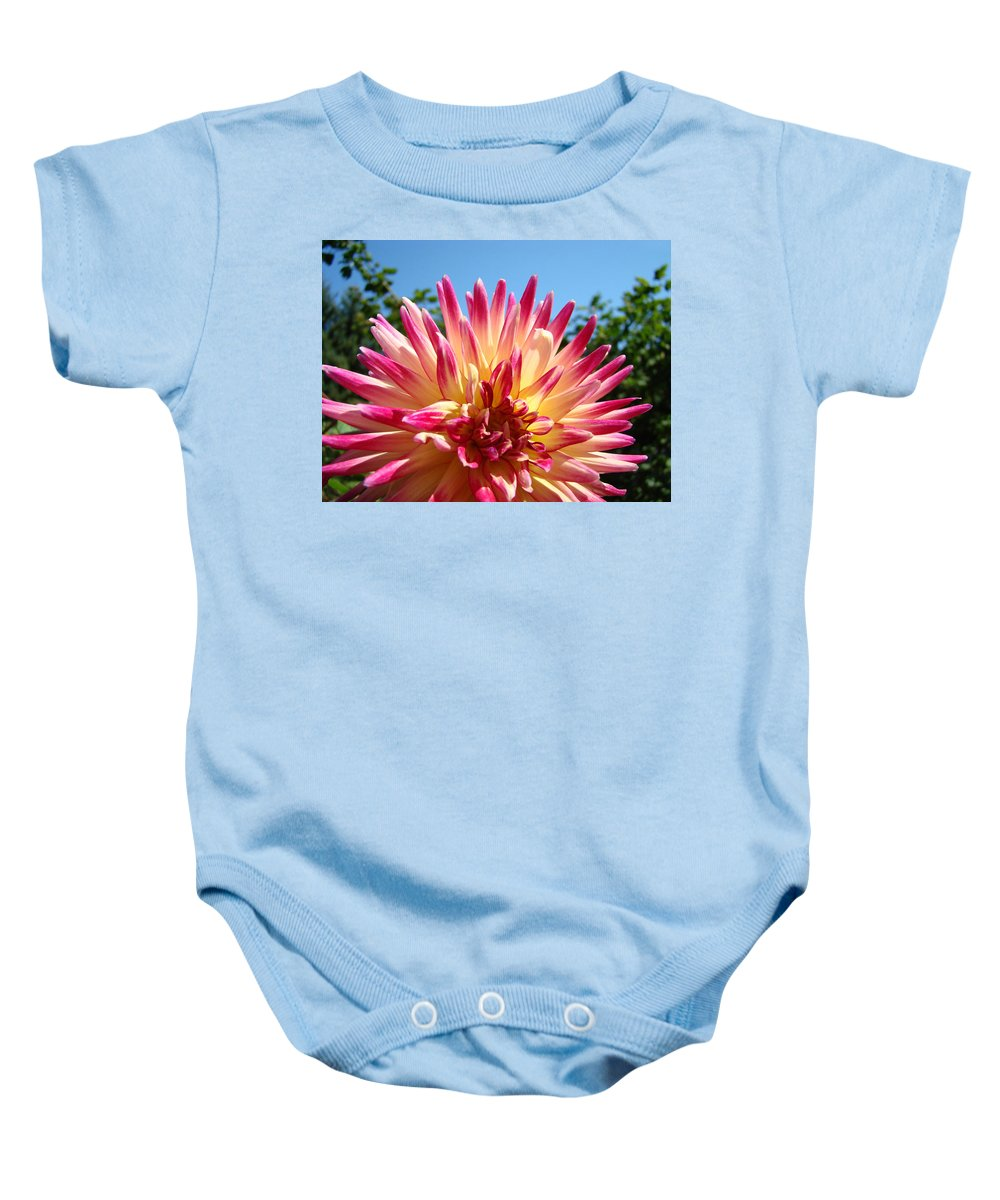 Flowers Baby Onesie featuring the photograph Floral Art Pink Yellow Dahlia Flower Baslee Troutman by Baslee Troutman