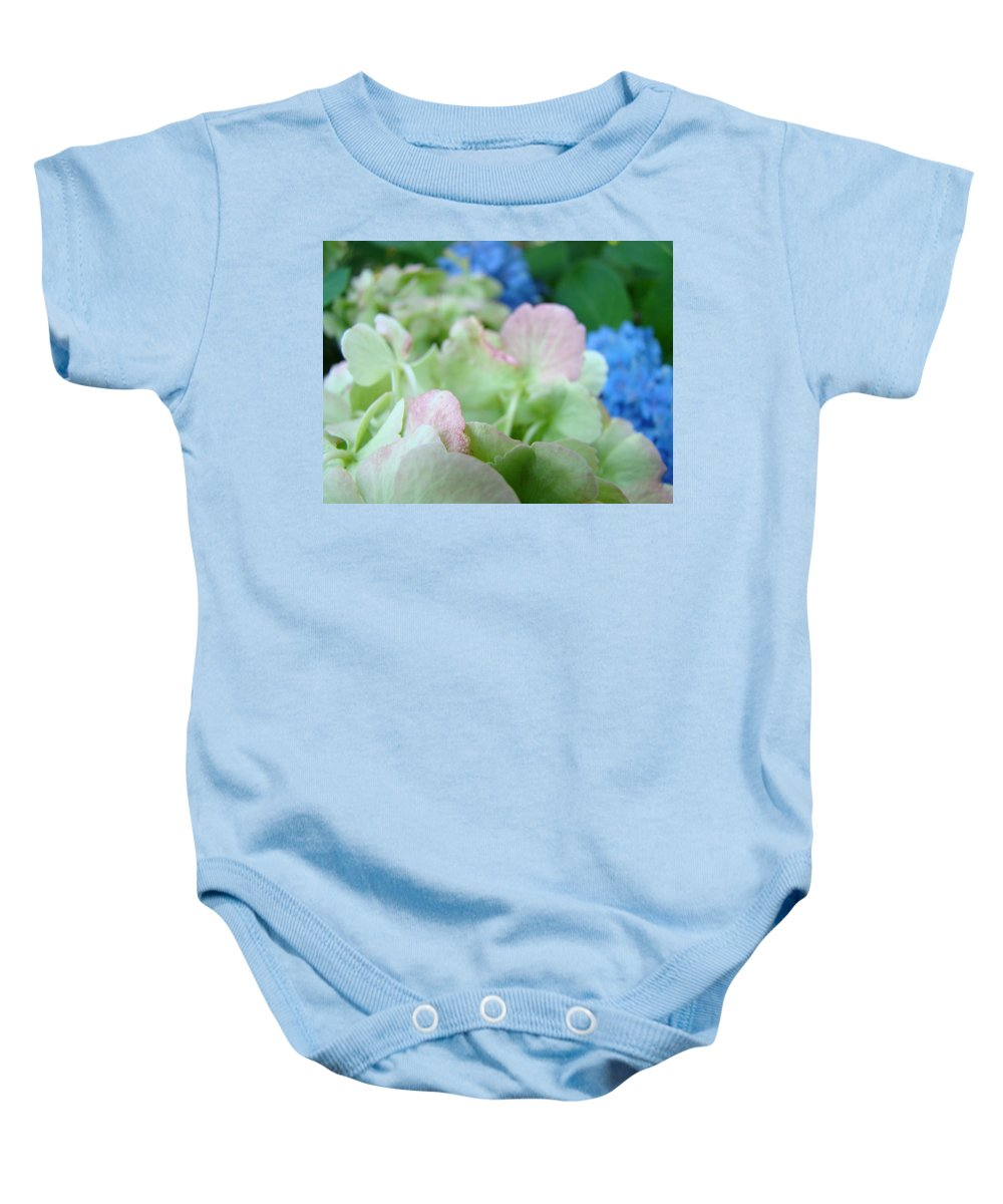 Hydrangea Baby Onesie featuring the photograph Floral Artwork Hydrangea Flowers Soft Nature Giclee Baslee Troutman by Baslee Troutman