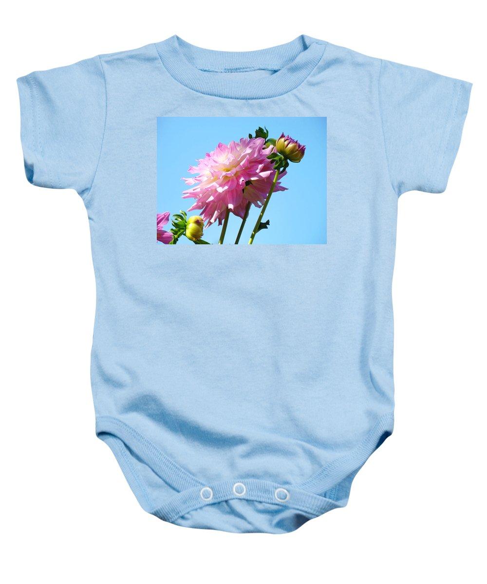 Dahlia Baby Onesie featuring the photograph Floral Landscape Art Print Pink Dahlia Flower Blue Sky Canvas Baslee Troutman by Baslee Troutman