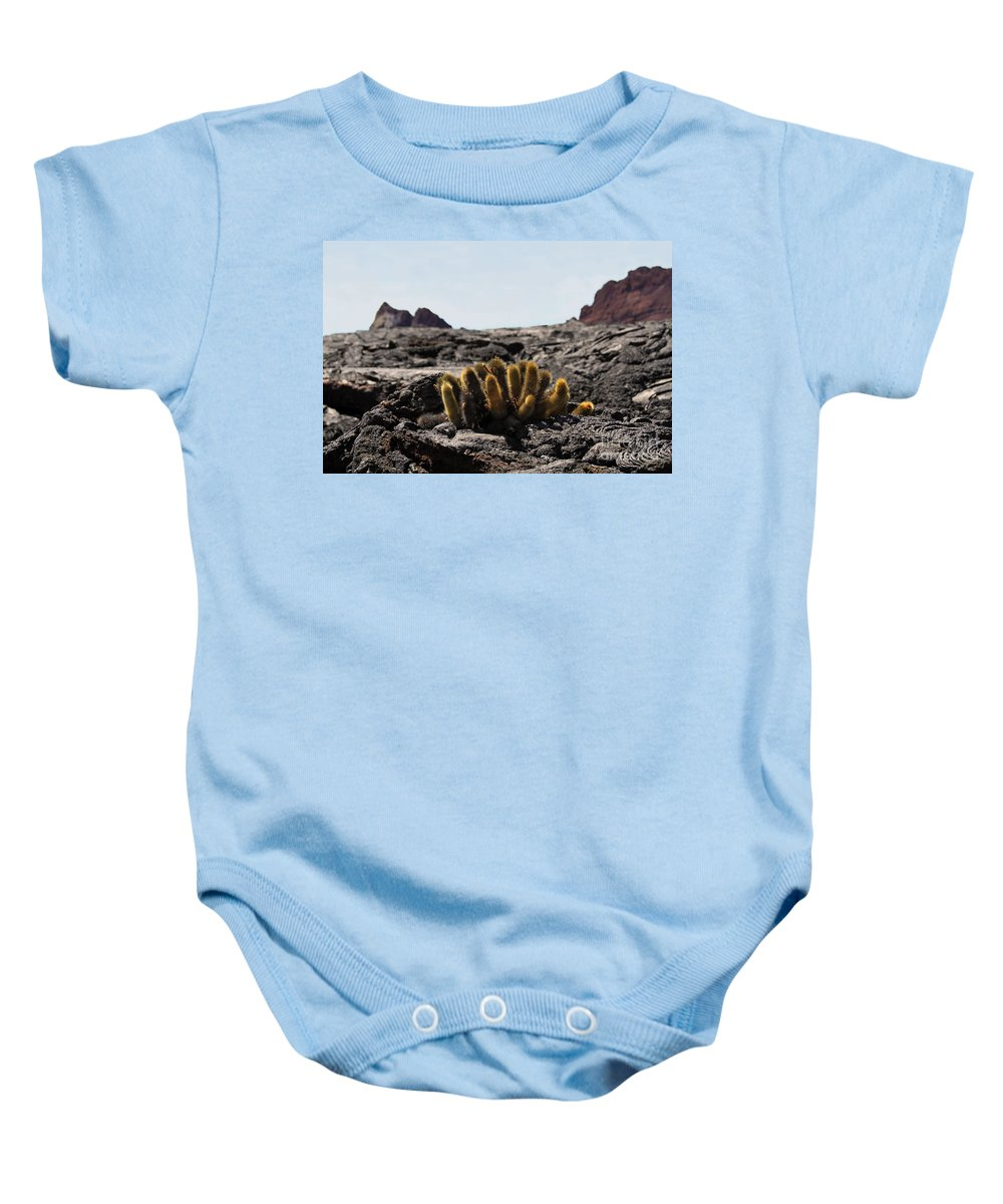 Lava Cactus Baby Onesie featuring the photograph Galapagos Lava Cactus by Catherine Sherman
