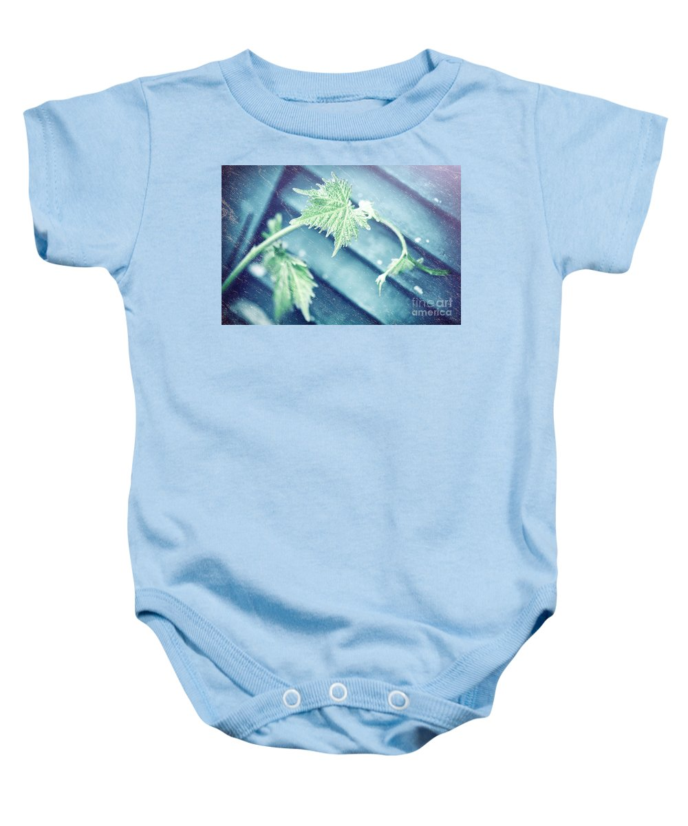 Abstract Baby Onesie featuring the photograph Grape Vine Old Style Background by Anna Om