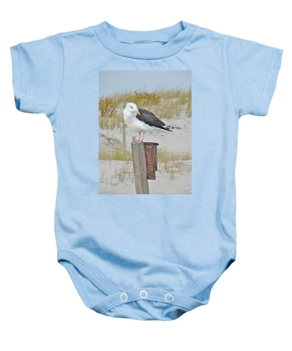 Seagull Baby Onesie featuring the photograph Great Black Backed Gull - Larus Marinus by Mother Nature